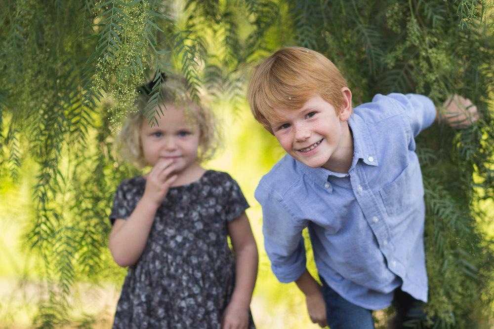Family Portrait Sessions -