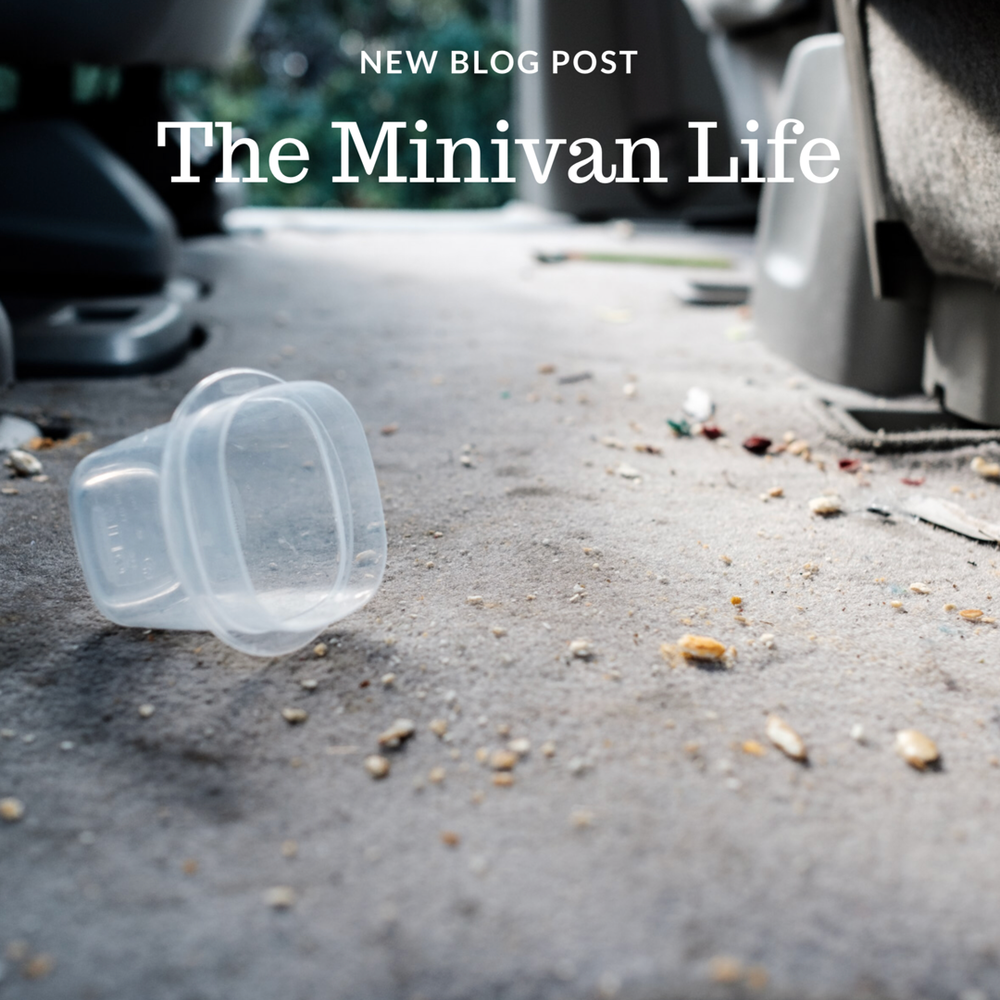 Blog Post - The Minivan Lifestyle