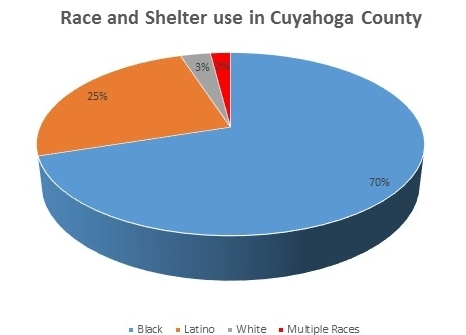 Race and Shelter use in CC.jpg