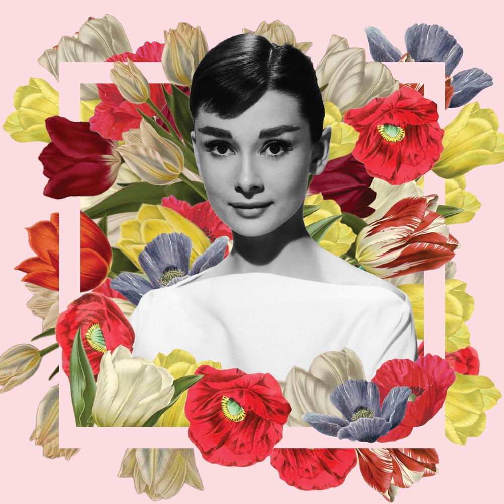 Audrey Composition.jpg