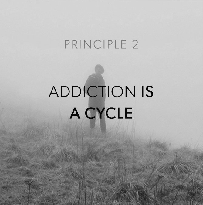 Principle2.jpg