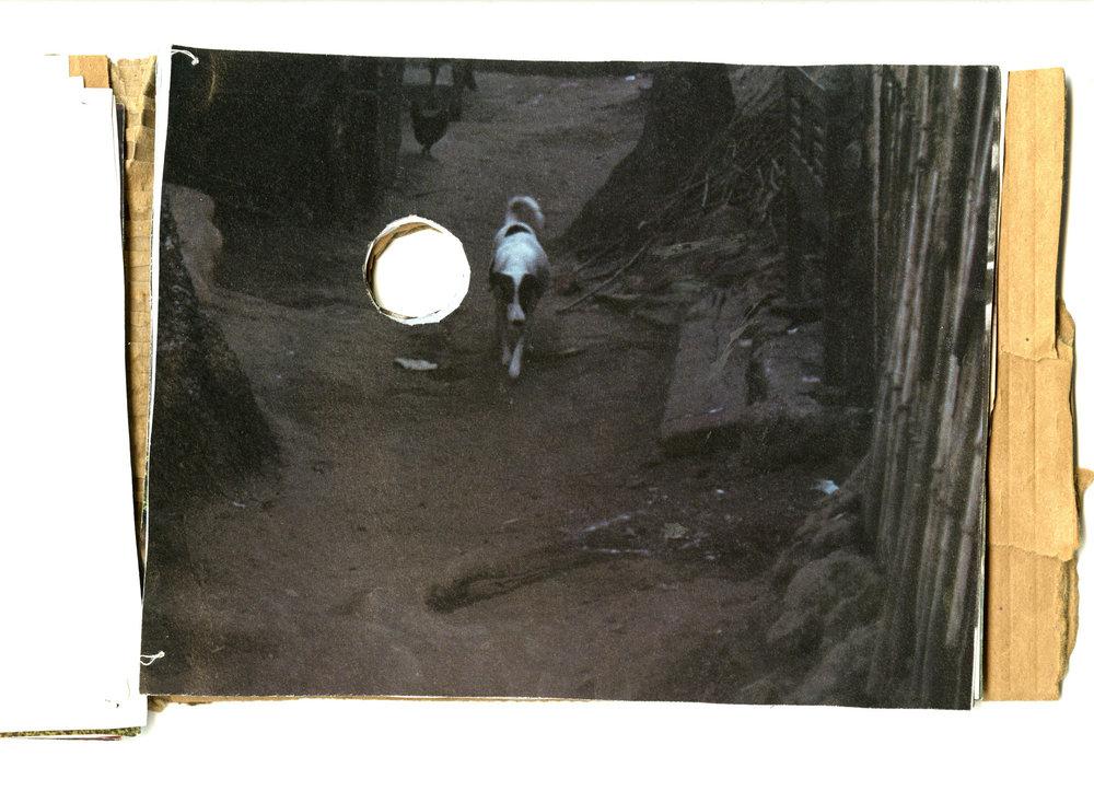 portal12.jpg