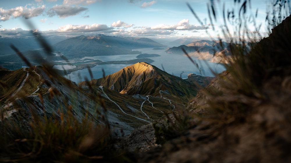 Jesse Echevarria - New Zealand