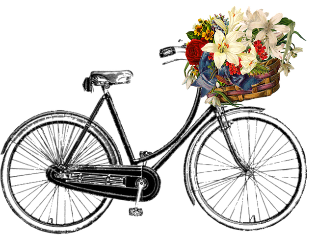 bicycle-910398__480.png