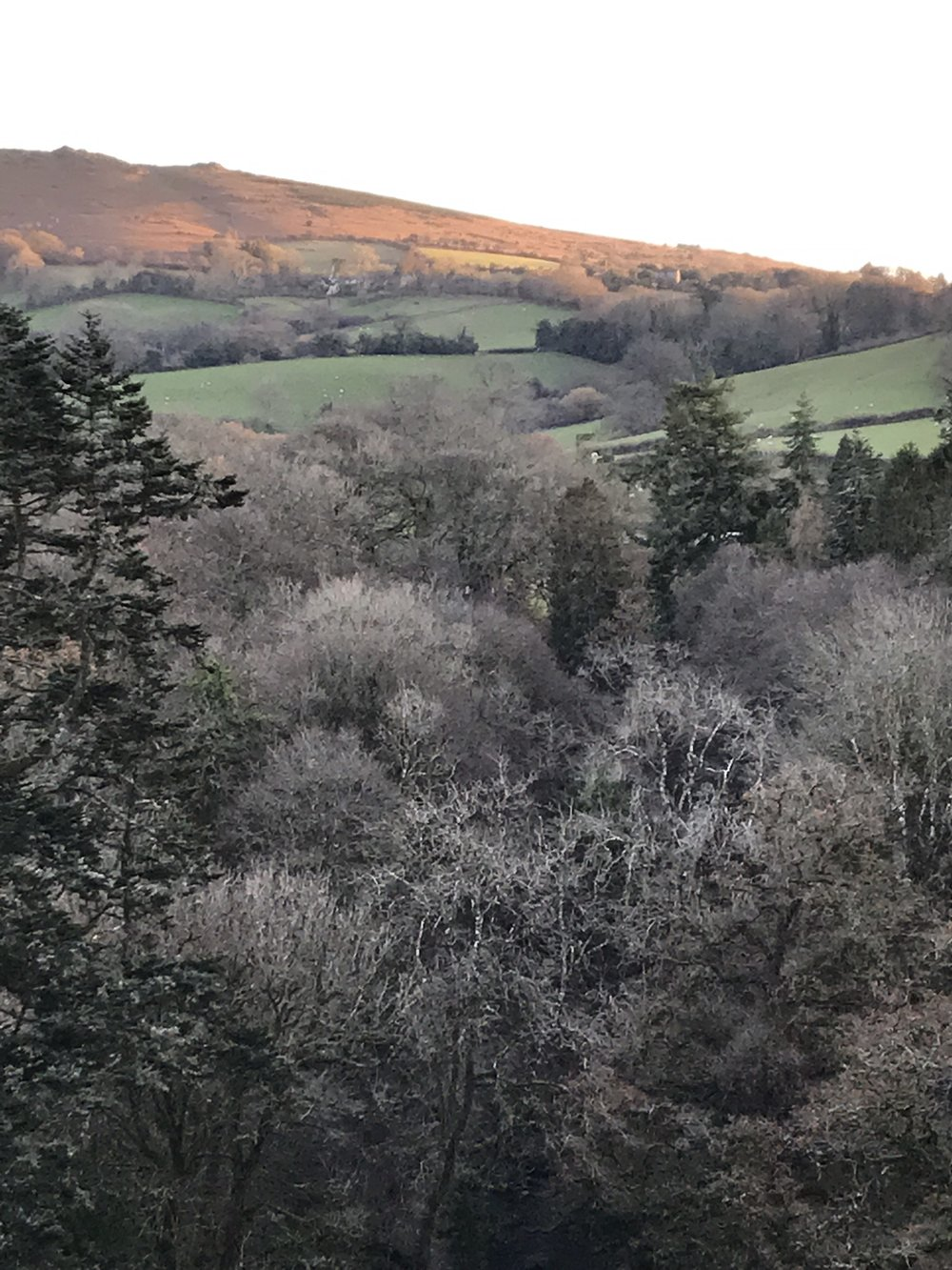 Meldon Hill early December 2017