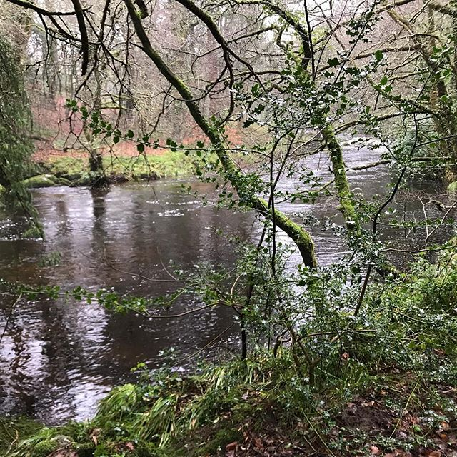 Beautiful river Teign on Christmas morning #dartmoor