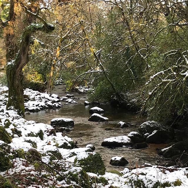 River #Teign in the snow #Dartmoor