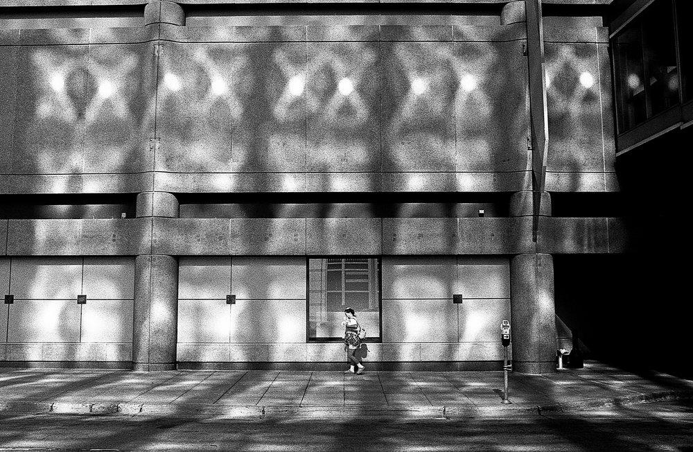 reflected+light_horn.jpg