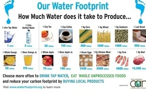 medium_water-footprint-network.jpg