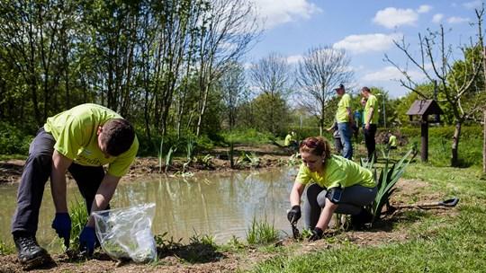 skanska-volunteers-biodiversity.jpg