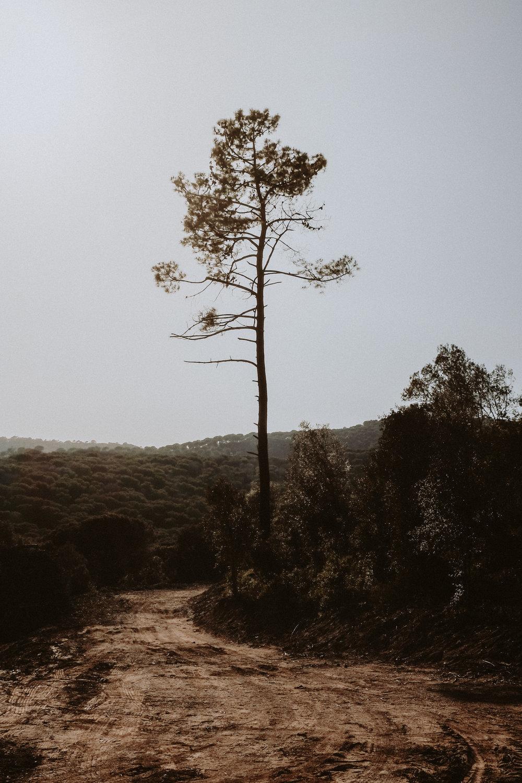 gravel-12.jpg