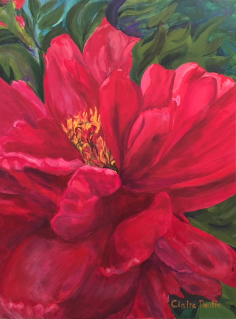 PEONIES SERIES #4   ACRYLIC ON CANVAS  48″ X 36″