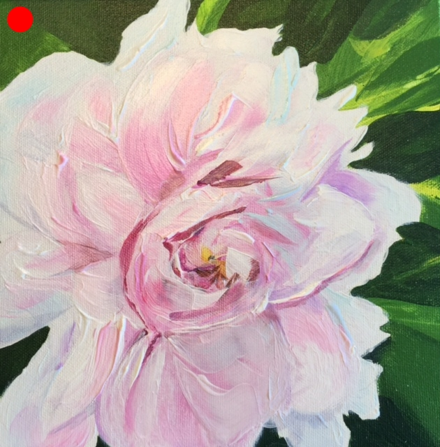PEONIES SERIES #6   ACRYLIC ON CANVAS  10″ X 10″