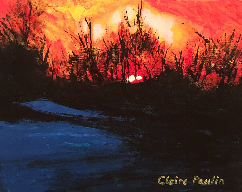 VIEW FROM TRAIN: CHASING THE SUNSET #1   ACRYLIC  16″X20″