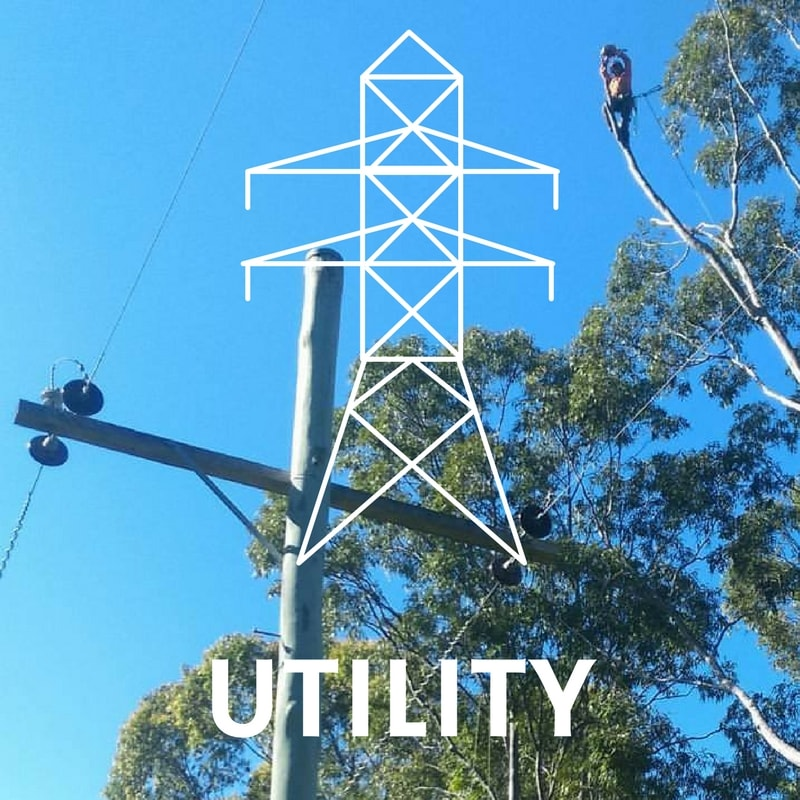 Utility Tree Services