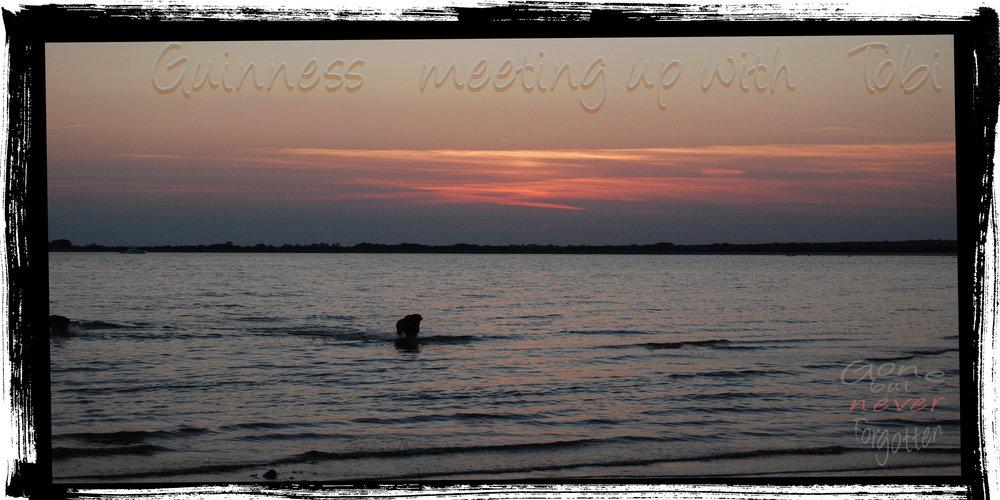 Guinness meeting Tobi sunset.jpg