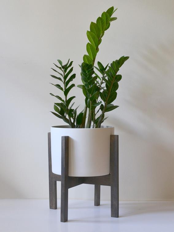 ZZ plant mid century modern plant stand.jpg
