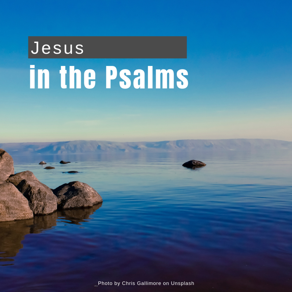 Jesus in the Psalms.png