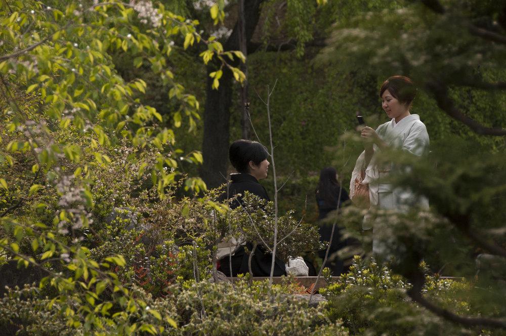Public Gardens in Nagoya, Japan