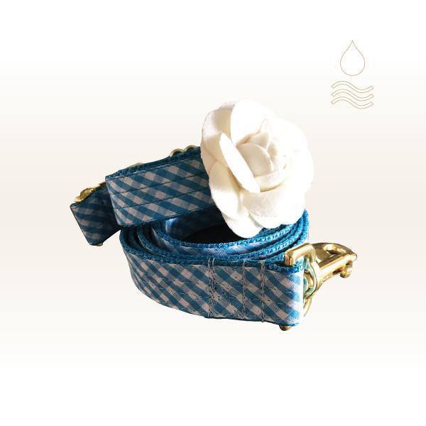 collars square-01.jpg