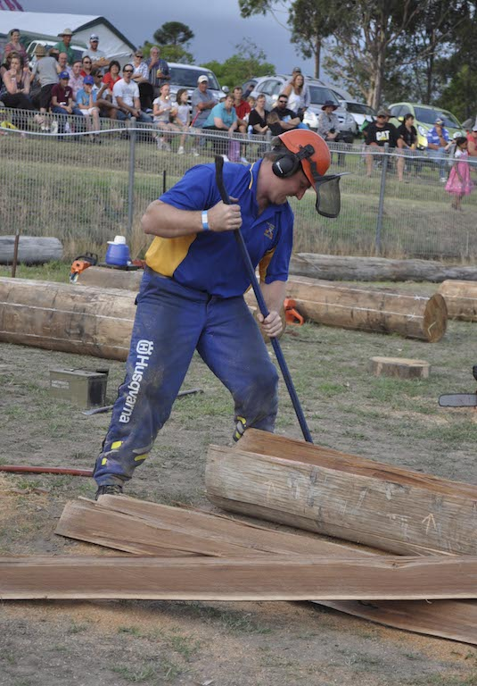 Show Fence split Joel Kiem separate logs web.JPG