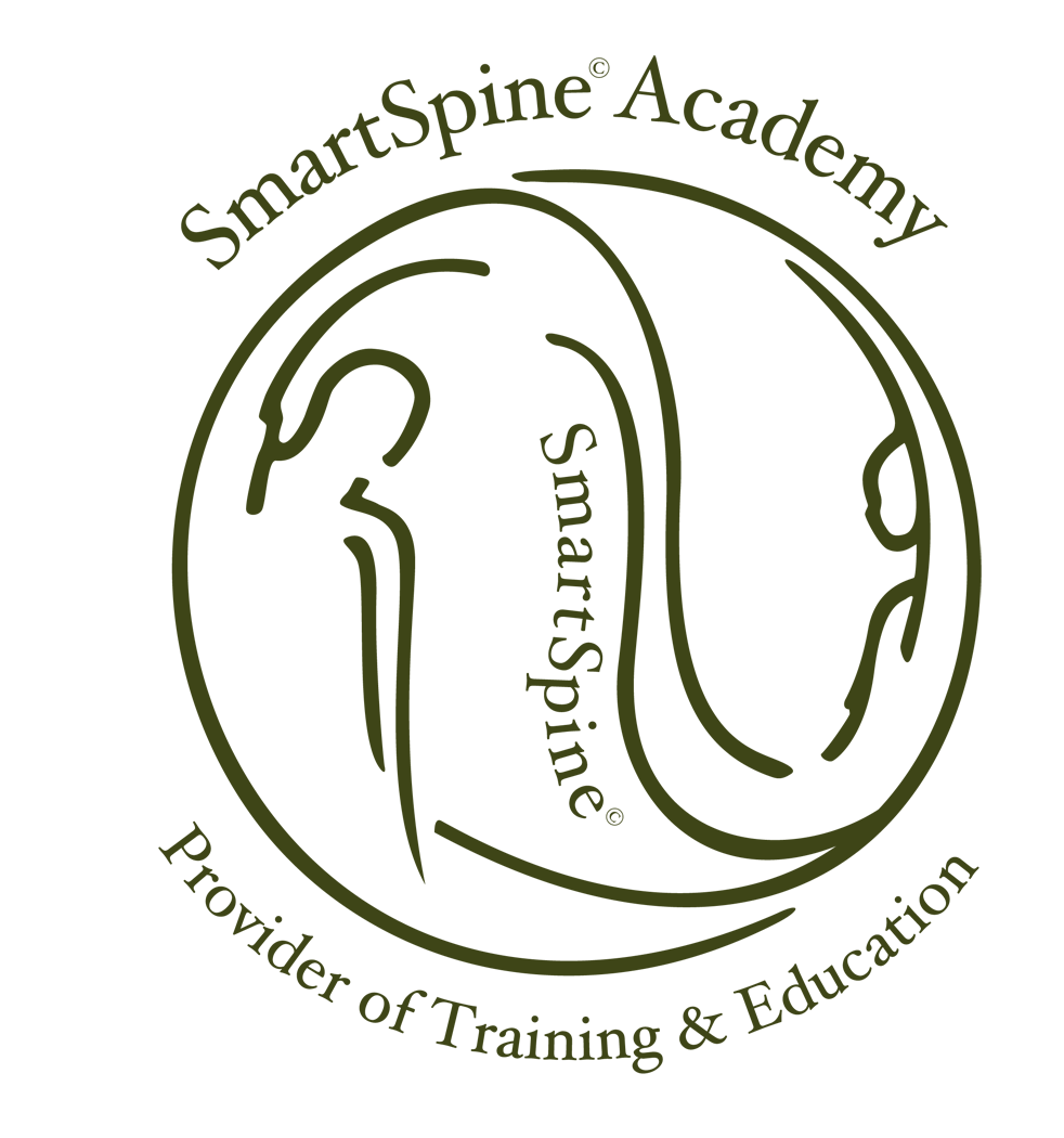 SS_Academy logo_rev2.png