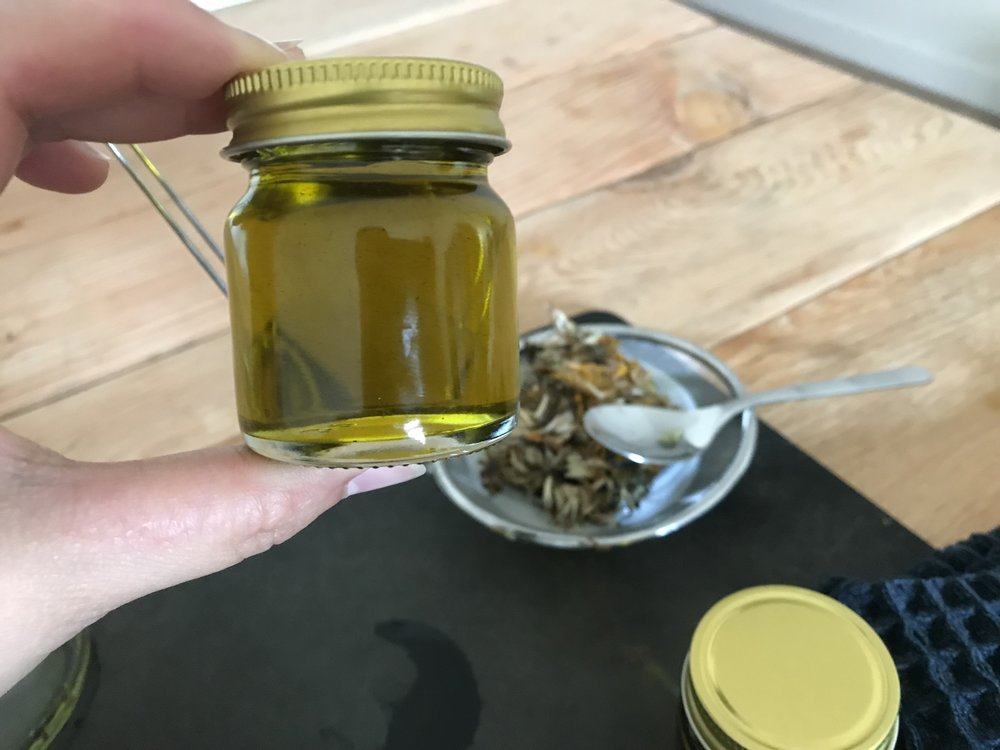 Arnica oil for bug bites.JPG