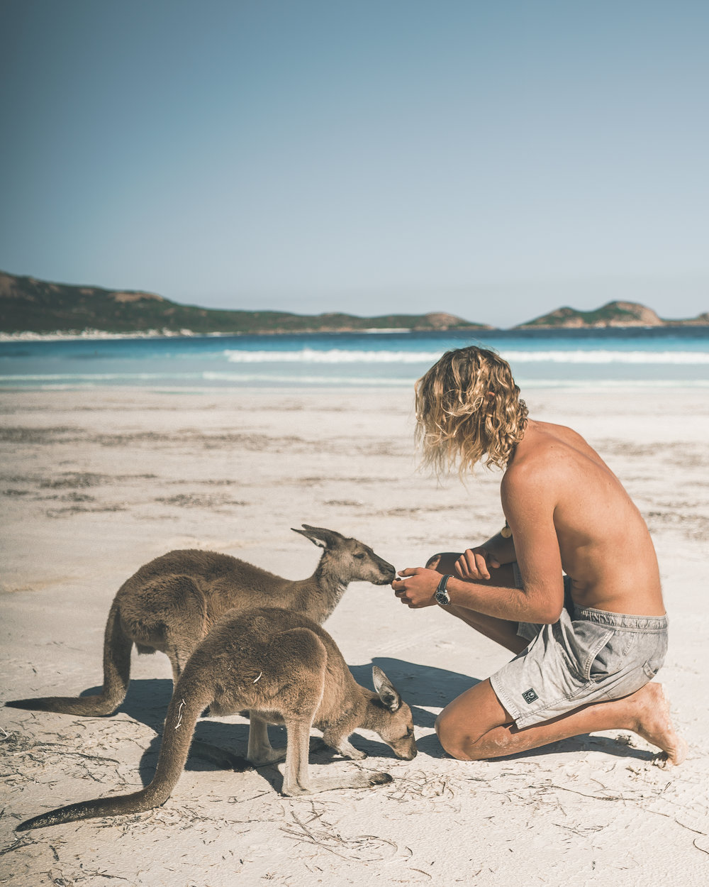 One of the coolest beaches is Lucky Bay, the Kangaroos just cruise about on the waters edge...Pretty insane!