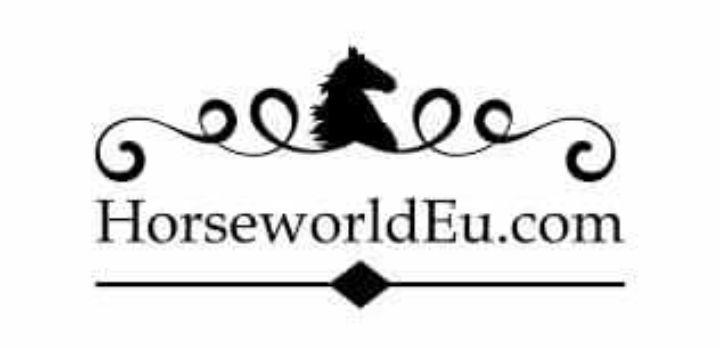 horse world.jpg