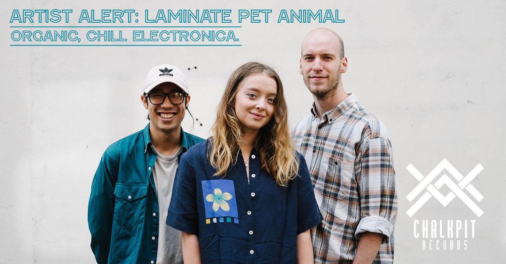 https://www.chalkpitrecords.com/new-blog/artistalert/laminated-pet-animal