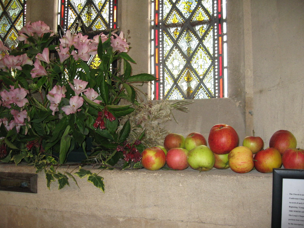 Flower Arrangers: - We are fortunate to have a group of flower arrangers who keep our four churches beautifully decorated throughout the year. If you enjoy being creative with flowers and would like to be a part of our current team then we would love to hear from you.