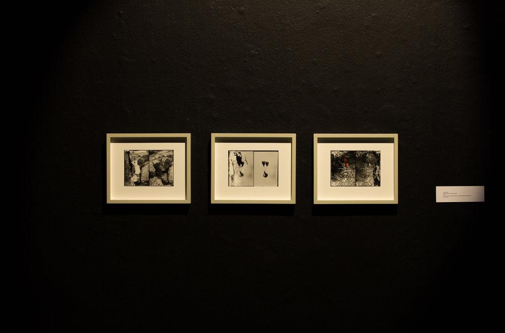 FADA Gallery 2015-05-13-15.jpg