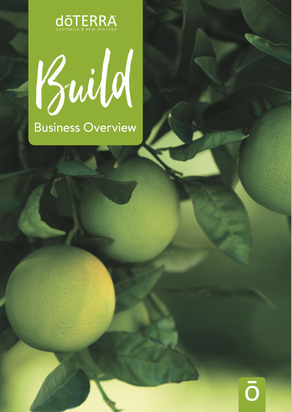 Click here to download our Business overview