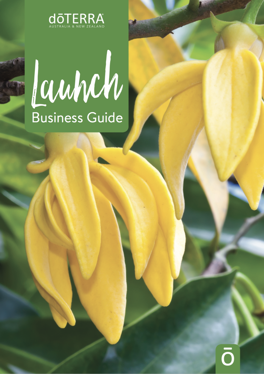Click here to download our Launch Business Guide
