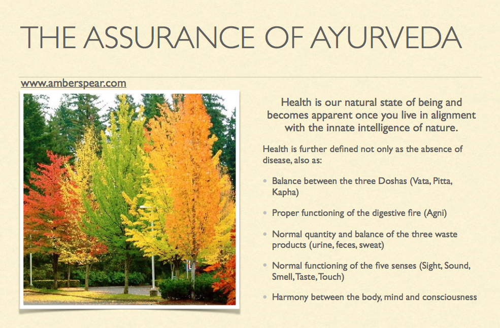 the assurance of ayurveda amberspear.com.png