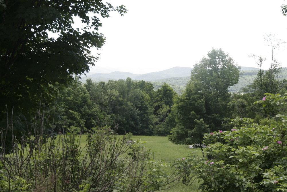 Pond House-View.JPG