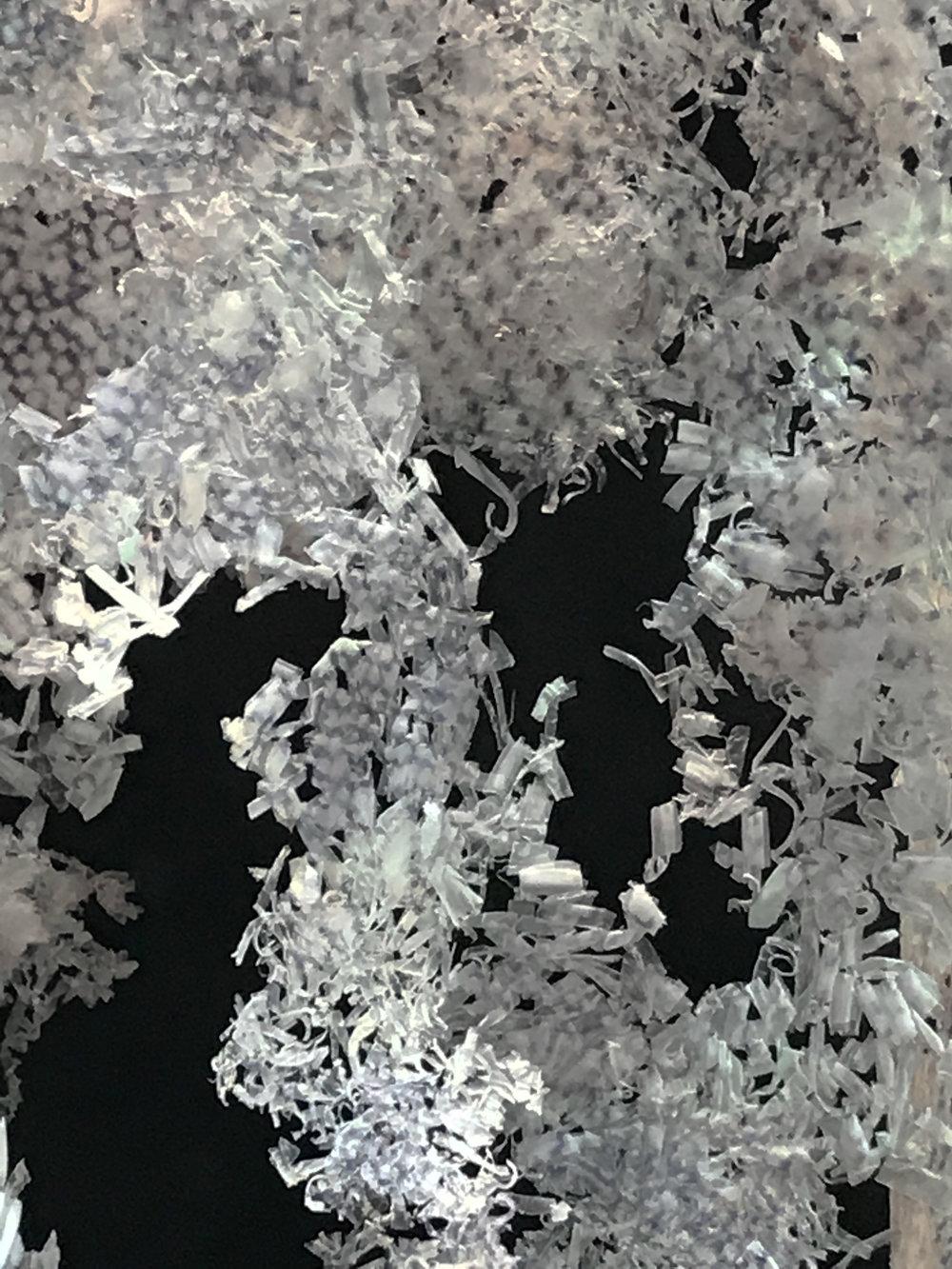 7-continent-Hors-studio-Détail-7ème-continent2.jpg