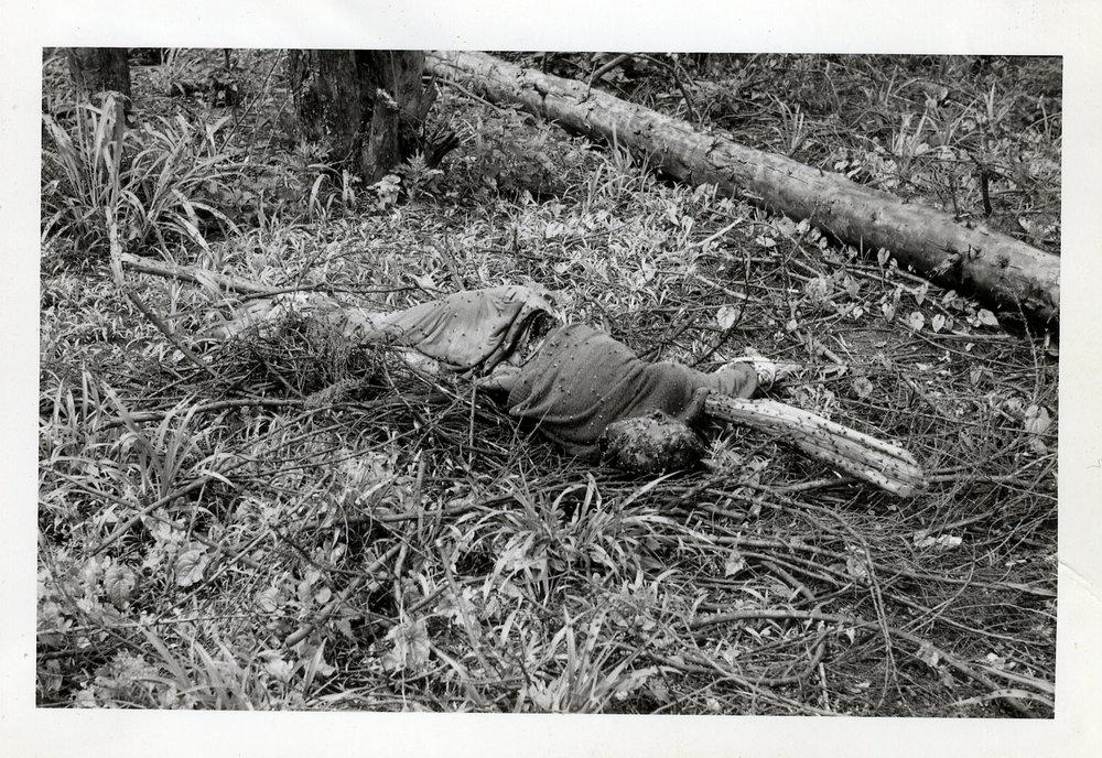 En dödad katanges som lämnats i terrängen.