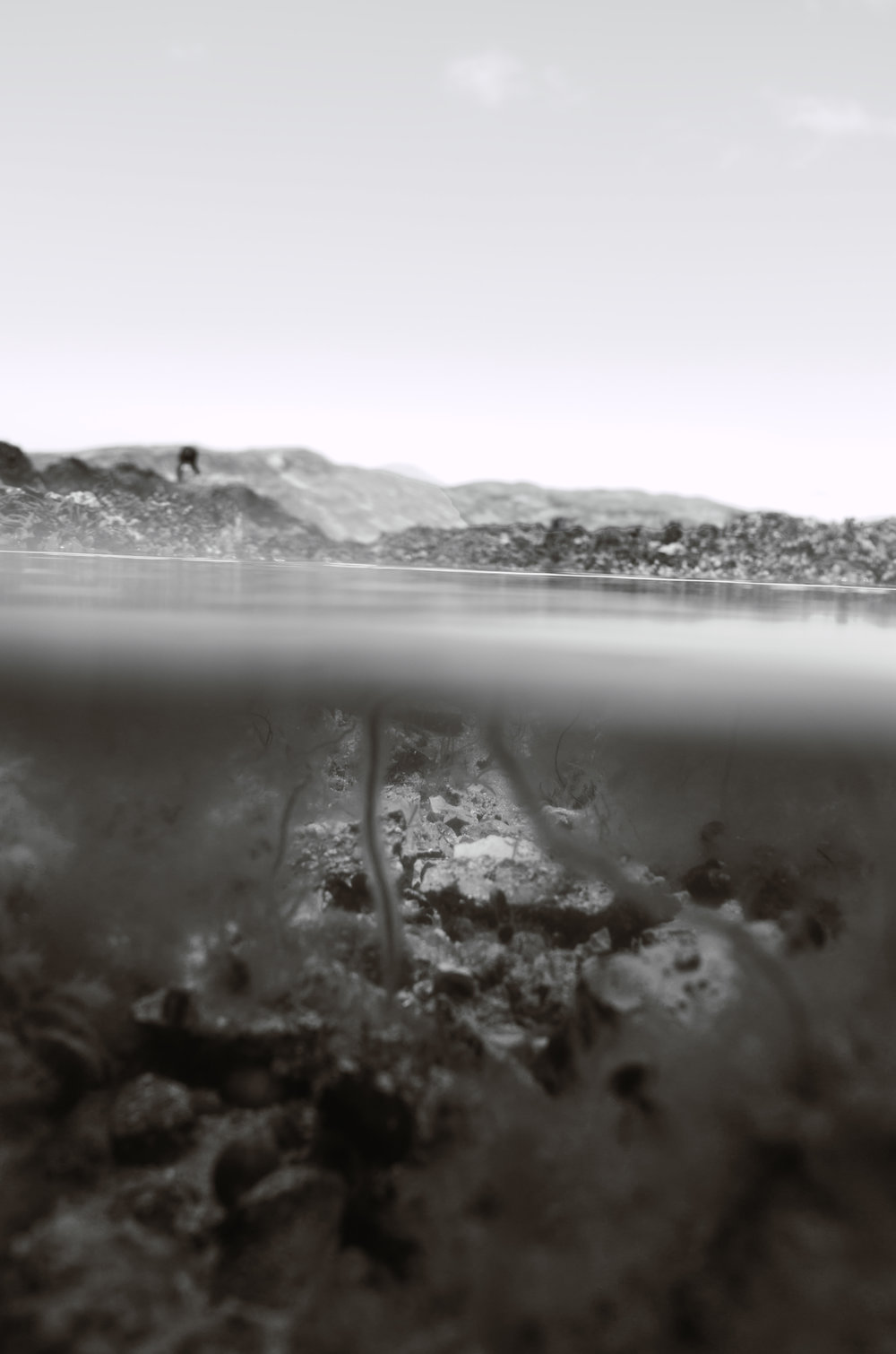 lostfragment24bw.jpg