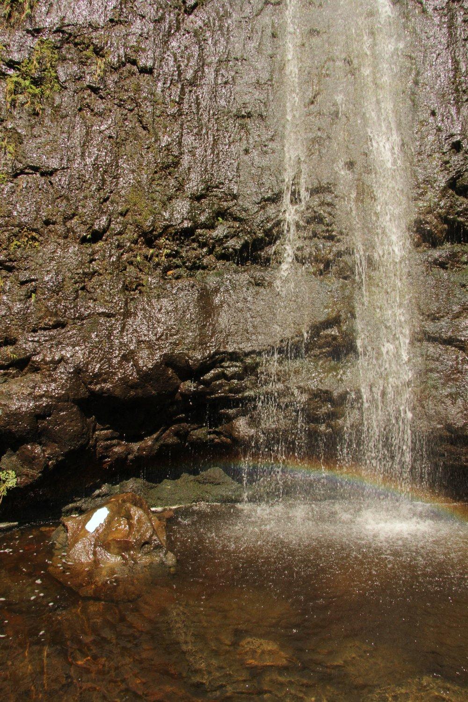 hawaii selection 01 - 49.jpg