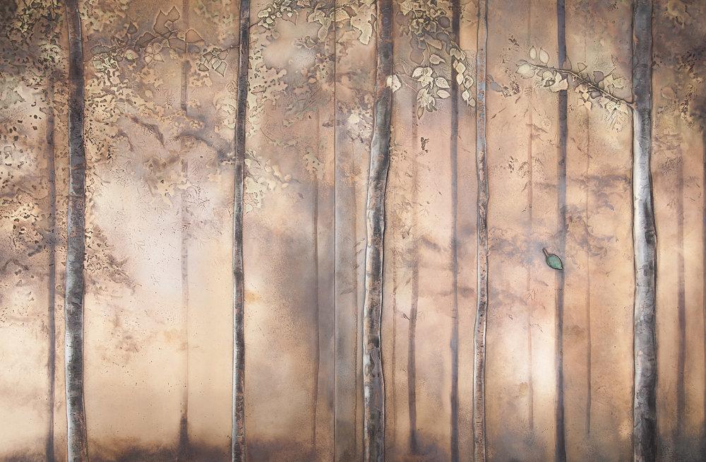 bu_00992_treescape_B.jpg