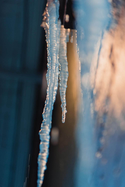 Snow in New Orleans Kallistia Photography-8.jpg