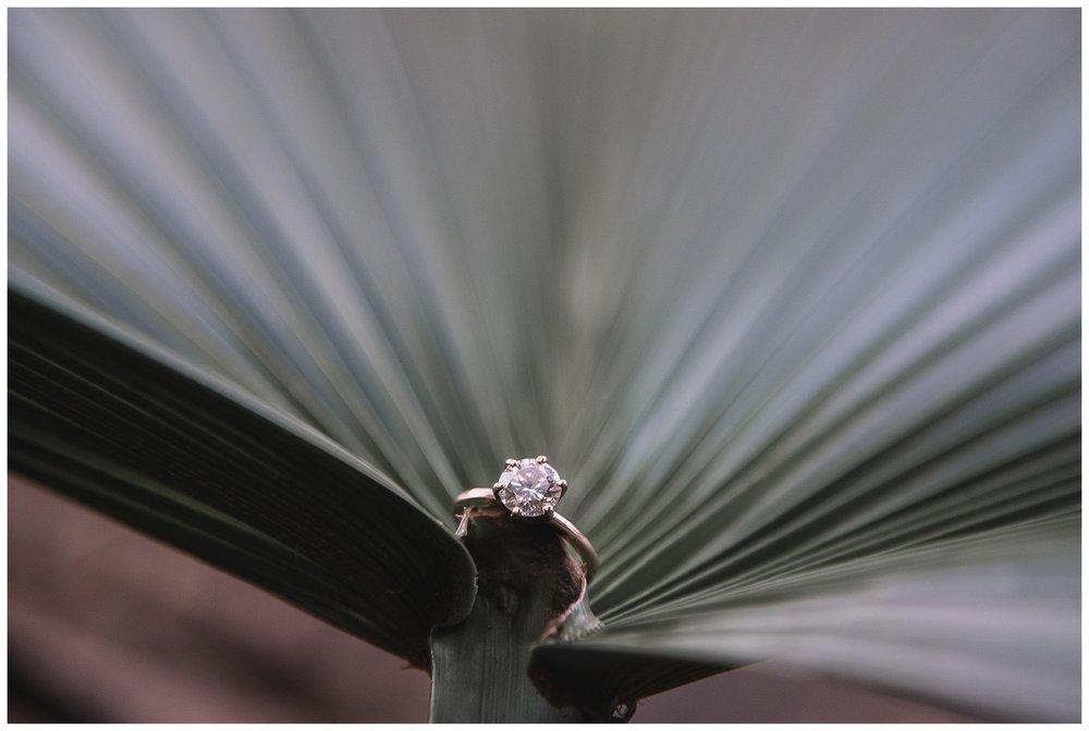Audobon Park Engagement - New Orleans - Kallistia Photography 3