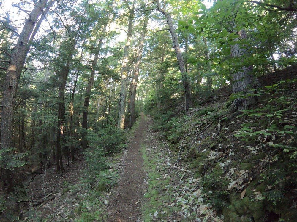 Uphill.jpg