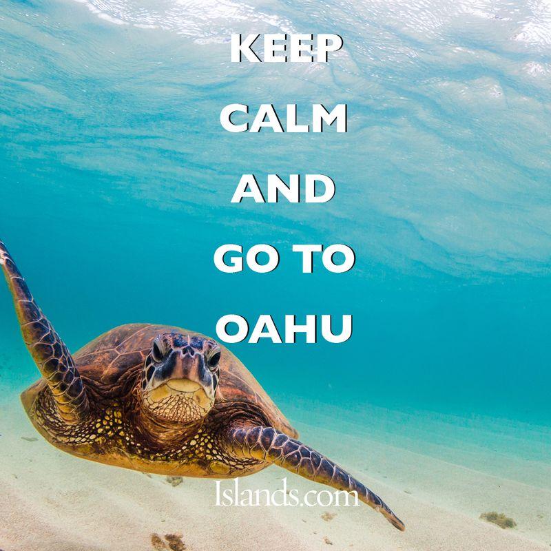 keep-calm-and-go-to-31.jpg