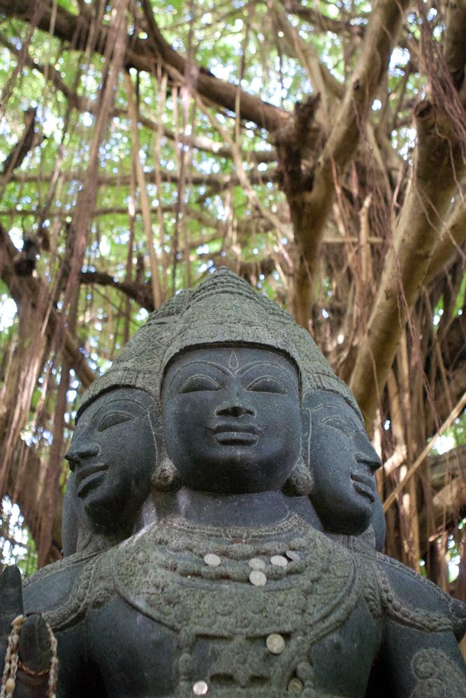 kauai-hawaii-travel-photography-04