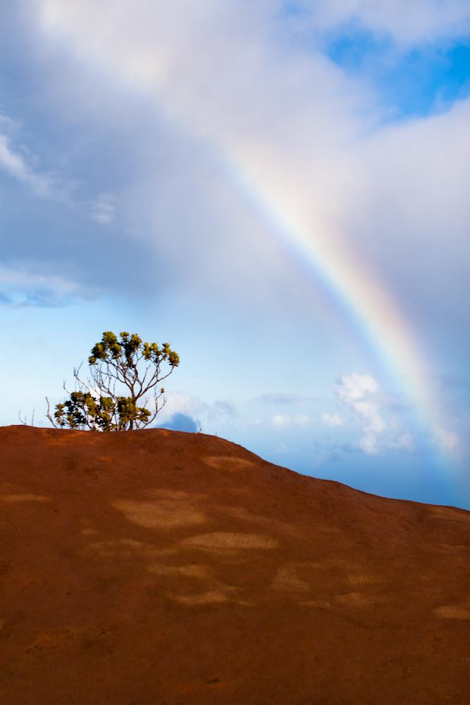 kauai-hawaii-travel-photography-08