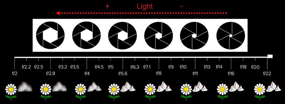 Aperture cheat sheet. Wide apertures let a great amount of light in and create a shallow depth-of-field, while narrow apertures let a limited amount of light in and make a deep depth-of-field to get the whole scene in focus (ideal for landscape photography).