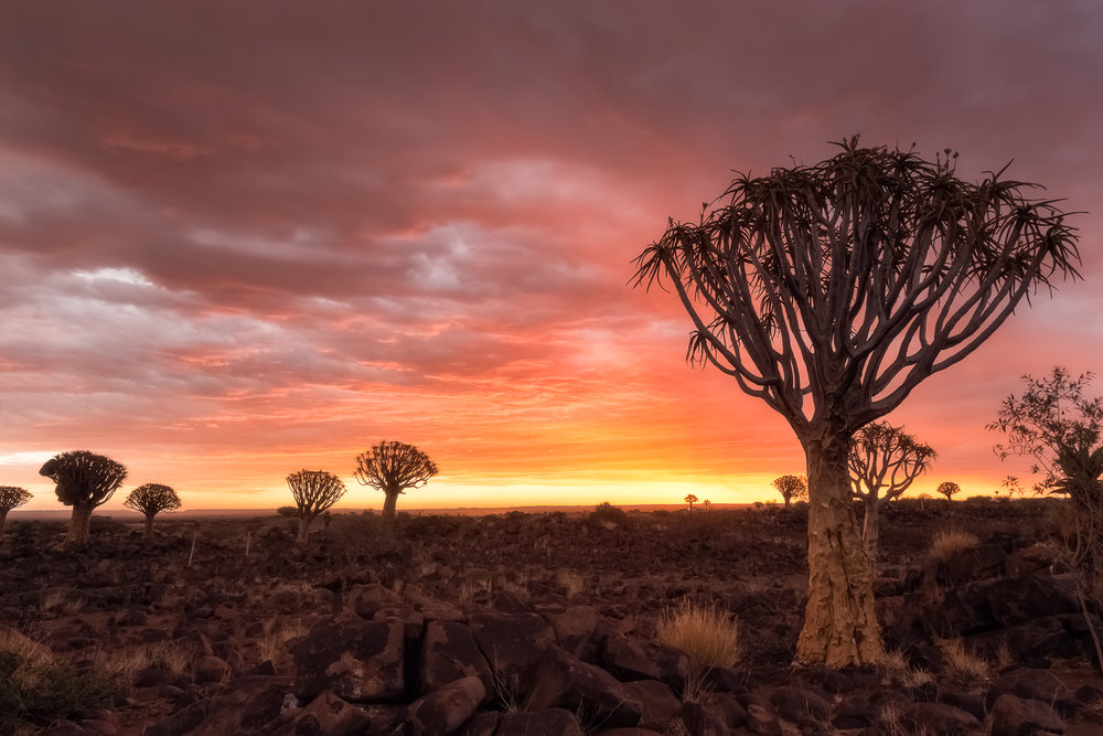 A gorgeous sunset in Namibia. You can clearly see the layer of rainy clouds and the gap in the horizon. This combination at sunset or sunrise will set the scene on fire.