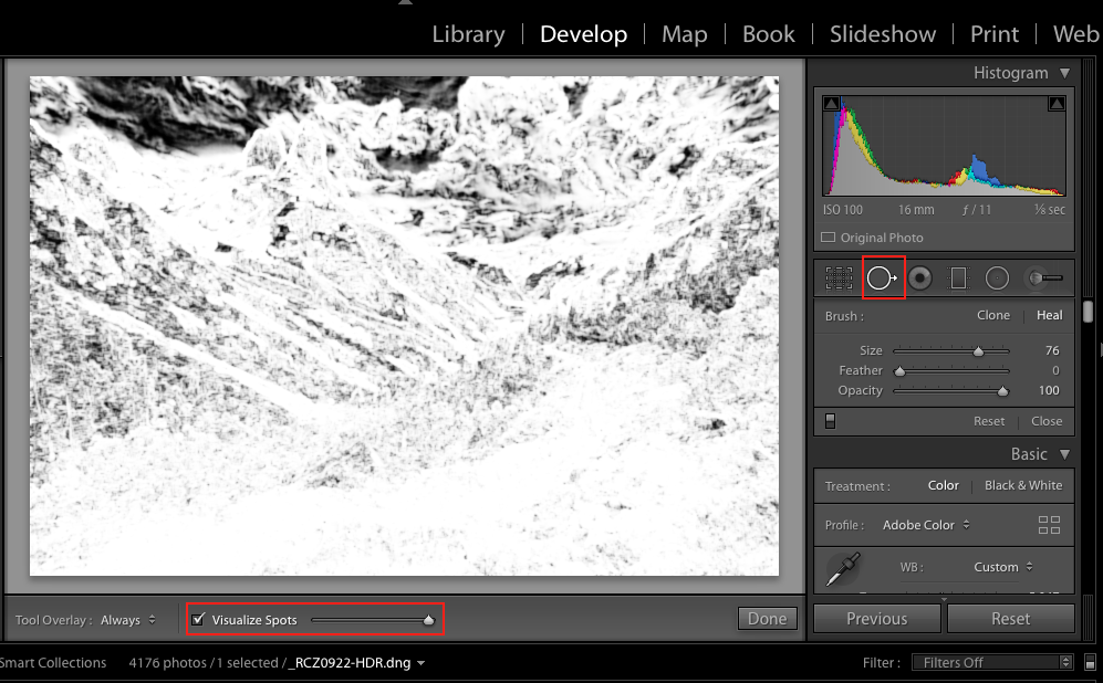 Once you selected the Dust Spot Removal mode, tick the Visualise Spots option to convert your picture in a super-contrasty black and white preview, where the edges are highlighted to visualise all the dust spots on your frame.